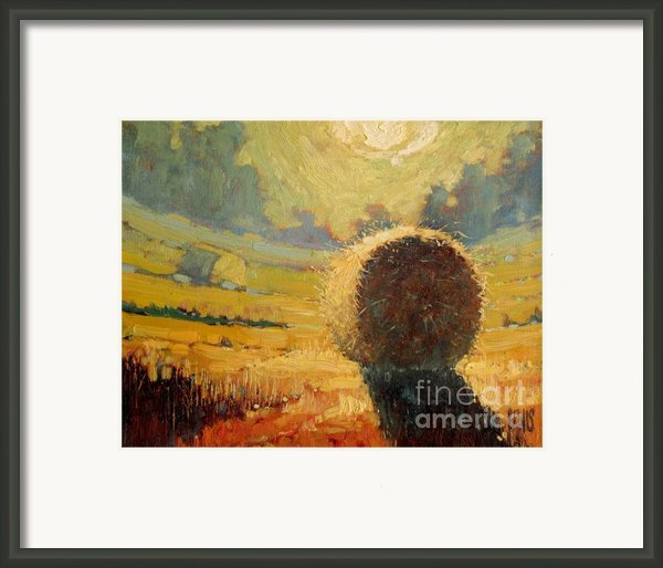 A Hay Bale In The French Countryside Framed Print By Robert Lewis
