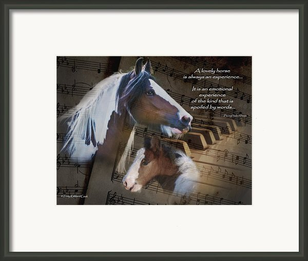 A Lovely Horse Framed Print By Terry Kirkland Cook