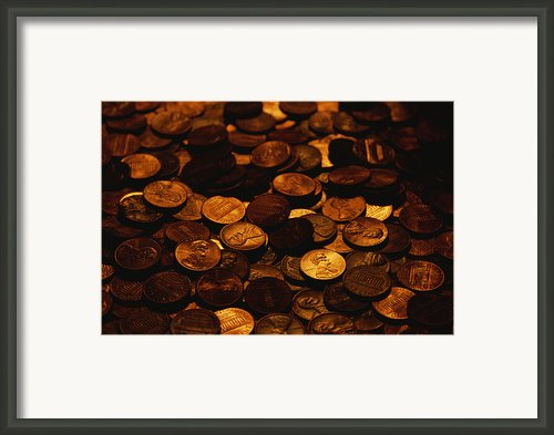 A Mound Of Pennies Framed Print By Joel Sartore
