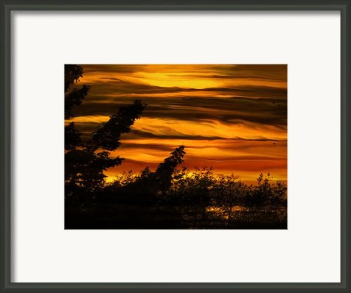A New Dawn Framed Print By Paul St George