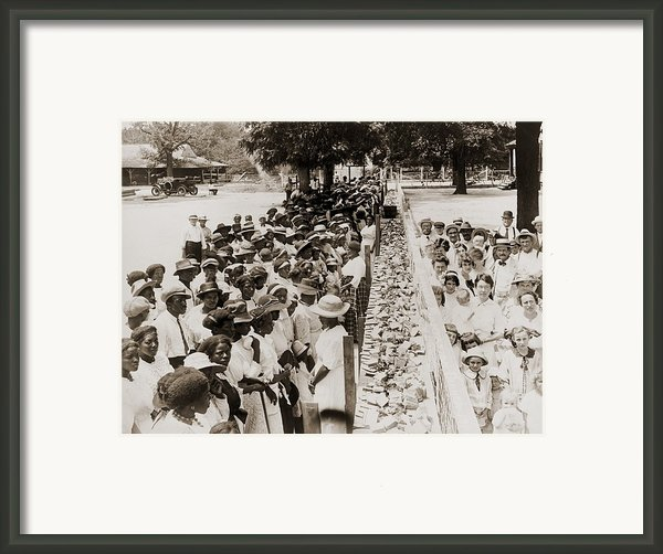 A Properly Segregated Summer Social Framed Print By Everett