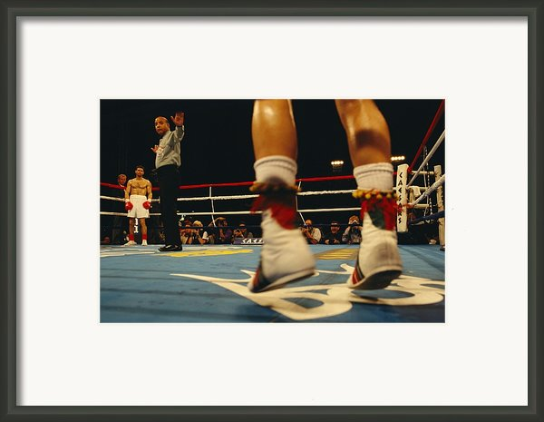 A Referee And Boxers Prepare Framed Print By Maria Stenzel