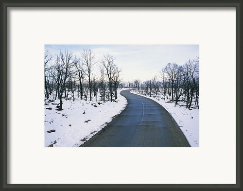 A Road Winds Through A Fire-damaged Framed Print By Rich Reid