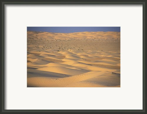 A Sea Of Dunes In The Sahara Desert Framed Print By Stephen Sharnoff