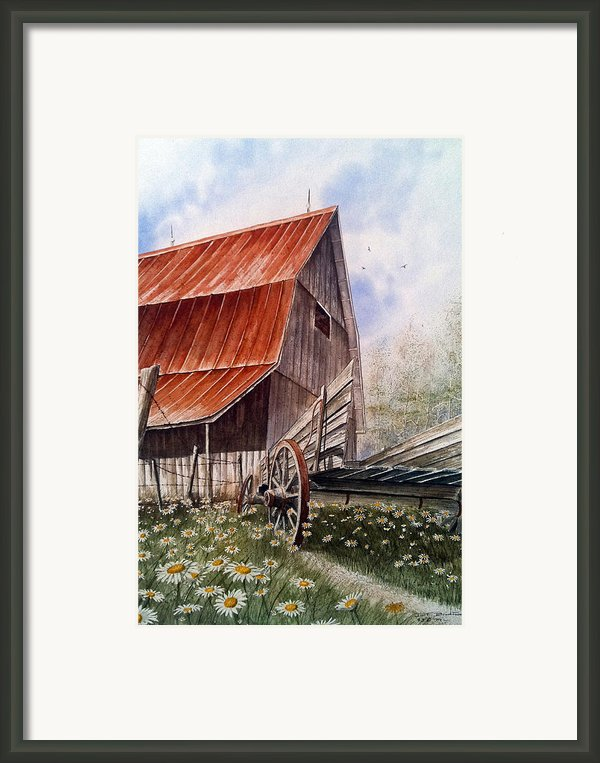 A Time For Daiseys Framed Print By Don F  Bradford