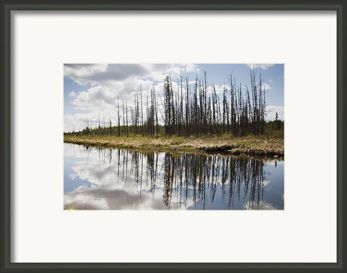 A Tranquil River With A Reflection Framed Print By Susan Dykstra