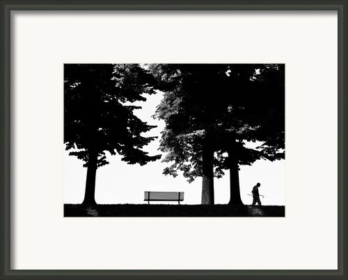 A Walk In The Park Framed Print By Artecco Fine Art Photography - Photograph By Nadja Drieling
