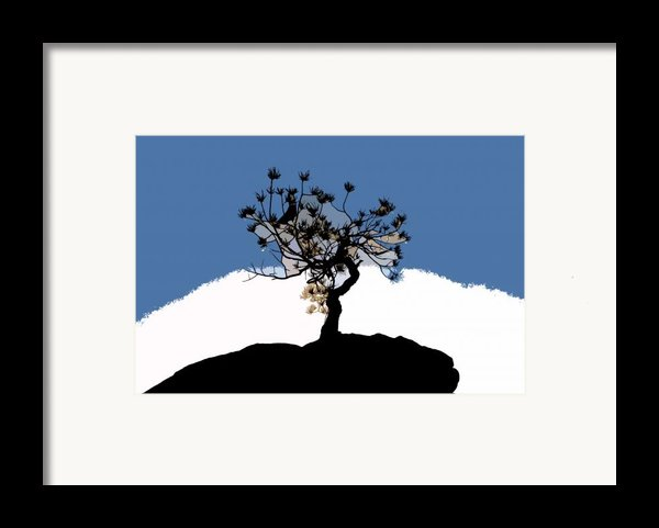 A Will To Live Framed Print By David Lee Thompson