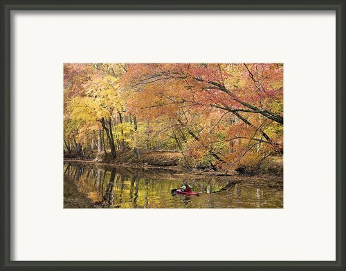 A Woman Kayaking Down The Chesapeake Framed Print By Skip Brown