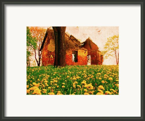 Abandoned Beauty Framed Print By Emily Allred