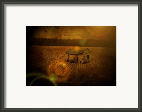 Abandoned Sunbeam Framed Print By Emily Stauring
