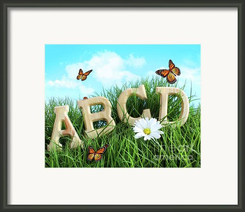 Abc Letters With Daisy In Grass Framed Print By Sandra Cunningham