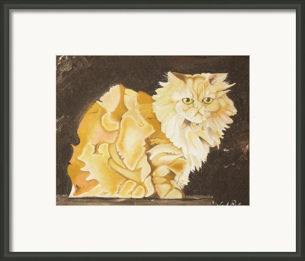 Abstract Cat Framed Print By Joseph Palotas