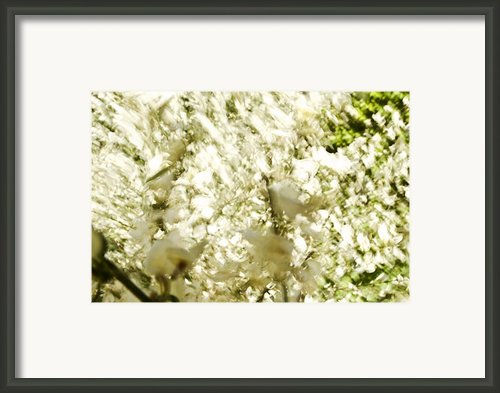 Abstract White Framed Print By Ray Laskowitz - Printscapes