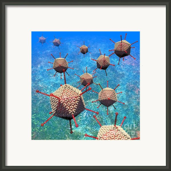 Adenovirus Particles 3 Framed Print By Russell Kightley