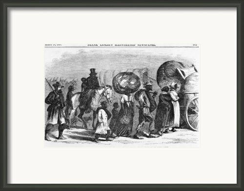 African Americans, Now Freedmen Framed Print By Everett