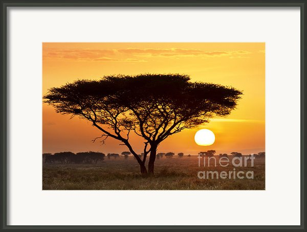 African Sunset Framed Print By Richard Garvey-williams