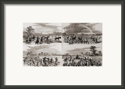 After The Civil War Many African Framed Print By Everett