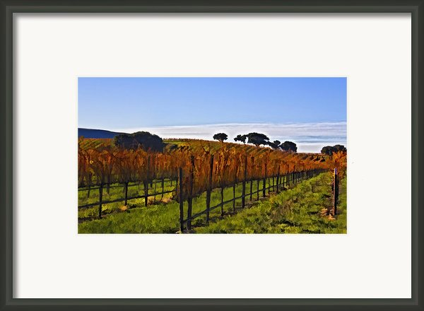 After The Harvest Framed Print By Patricia Stalter