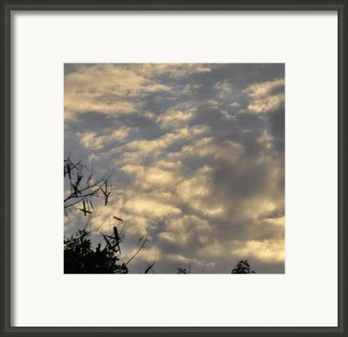 After The Storm Framed Print By Sandy Poore
