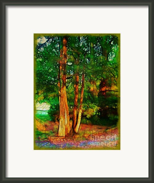 Afternoon Delight Framed Print By Judi Bagwell