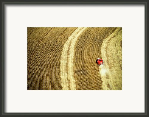Agricultural Harvesting Maize Framed Print By Marcos Alves