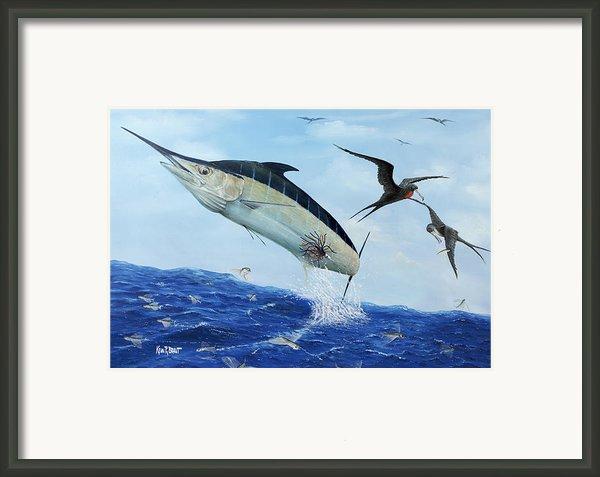 Airbourne Framed Print By Kevin Brant