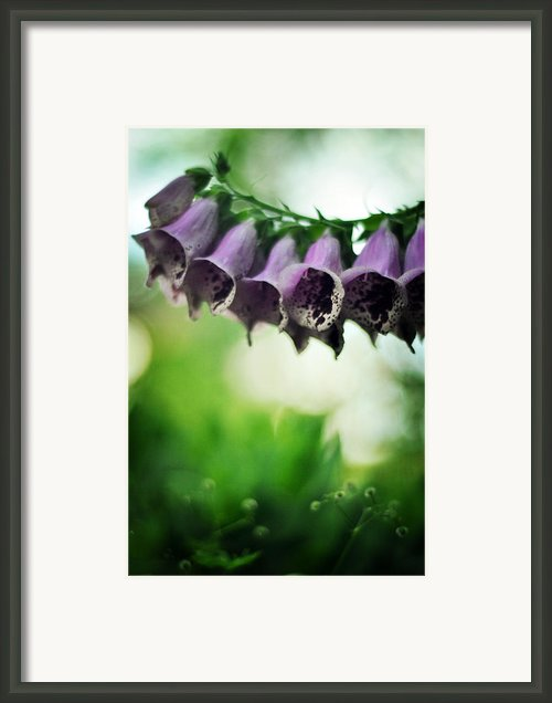 All Becomes Festival Framed Print By Rebecca Sherman