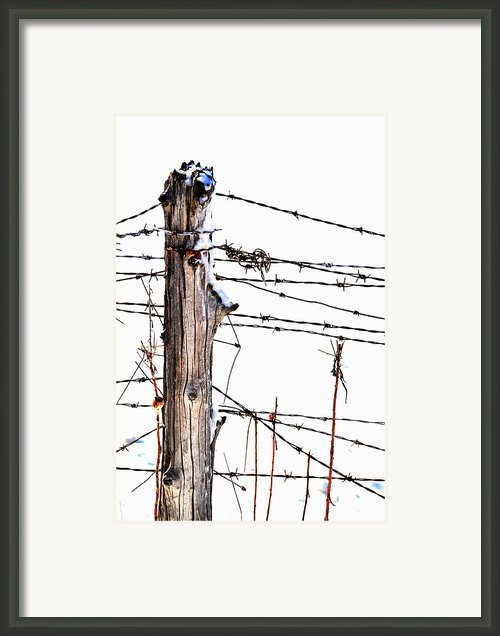 All Wired Framed Print By Emily Stauring