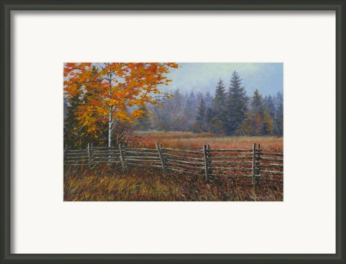 Along The Stoney Batter Road Framed Print By Richard De Wolfe