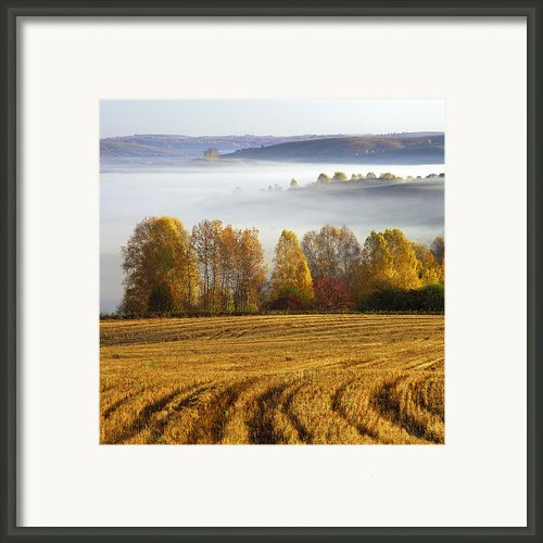 Altai Foothills Framed Print By Pavel  Filatov