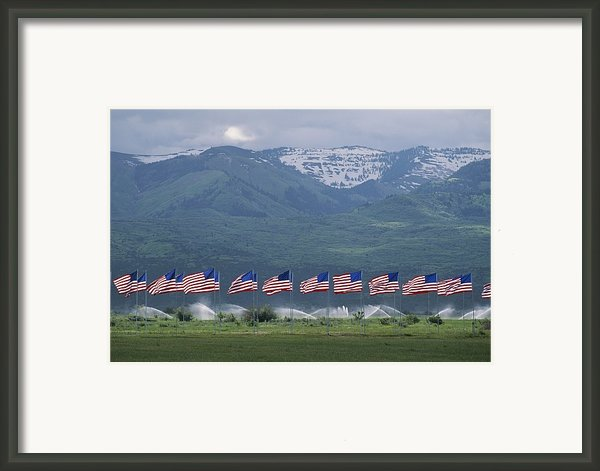 American Flags Honoring Veterans Framed Print By James P. Blair
