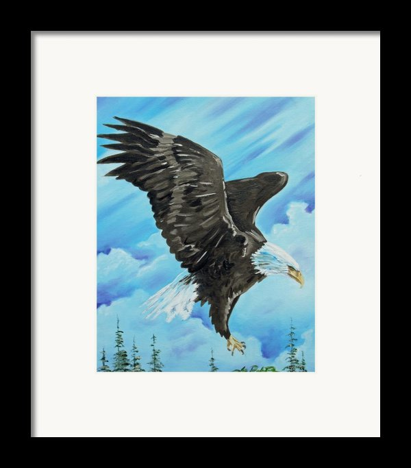 American Flight Framed Print By Joseph Palotas