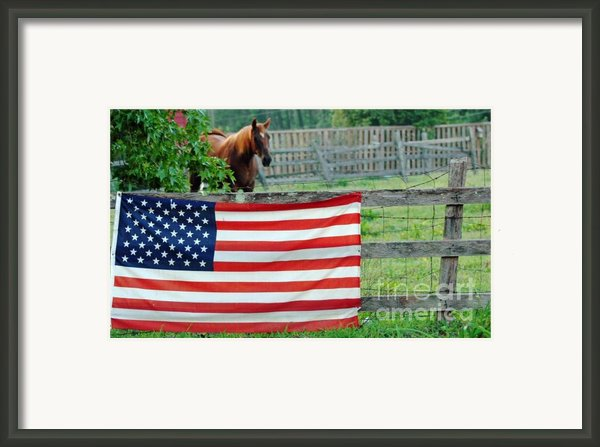 American Horse Framed Print By Anahi Decanio