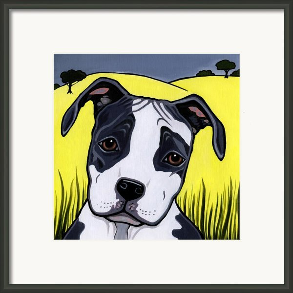 American Staffy Framed Print By Leanne Wilkes