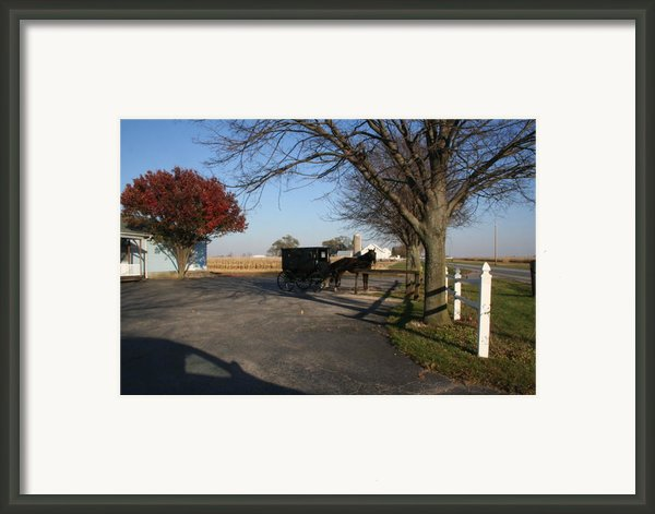 Amish 4 Framed Print By Eric Irion