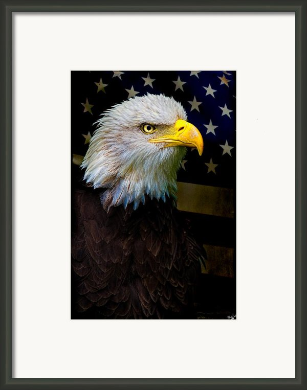 An American Icon Framed Print By Chris Lord