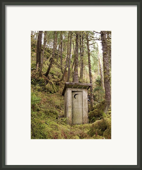 An Outhouse In A Moss Covered Forest Framed Print By Michael Melford