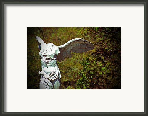 Ancient Flight Framed Print By Nichole Leighton