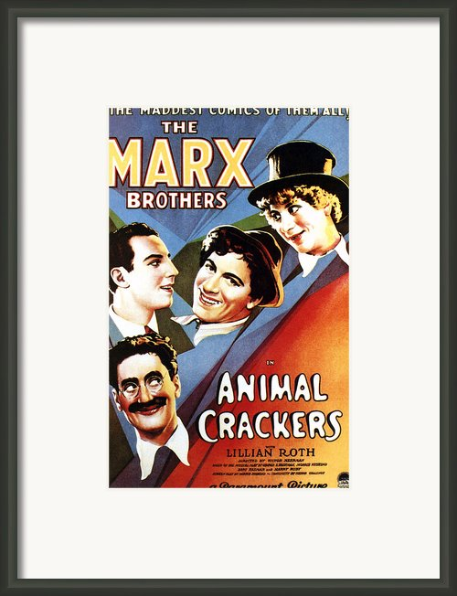 Animal Crackers, From Bottom Left Framed Print By Everett
