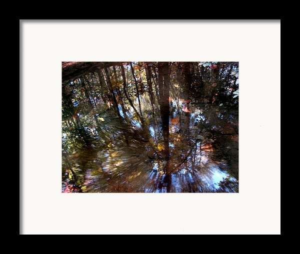 Anomaly  Framed Print By Tammy Cantrell