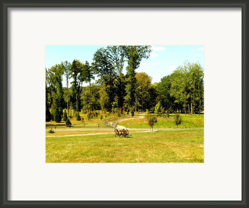 Antique Farm Equipment Framed Print By Mindy Newman