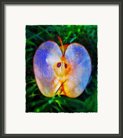 Apple 2 Framed Print By Skip Hunt
