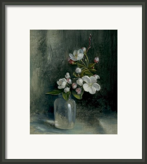 Apple Blossoms Framed Print By Lyndall Bass