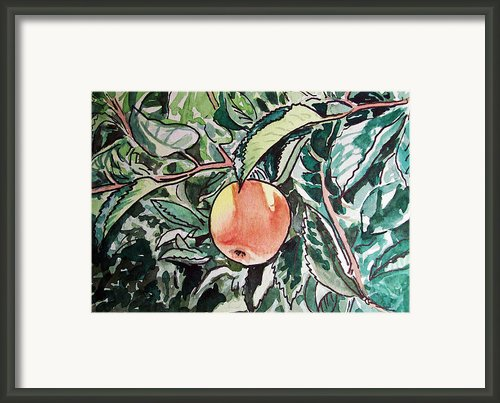 Apple Tree Sketchbook Project Down My Street Framed Print By Irina Sztukowski