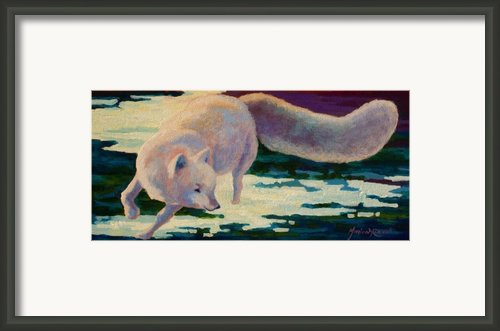 Arctic Fox Framed Print By Marion Rose