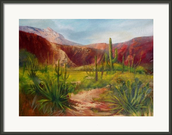Arizona Beauty Framed Print By Robert Carver