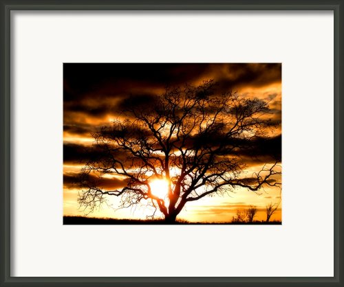Arms Wide Open Framed Print By Karen M Scovill