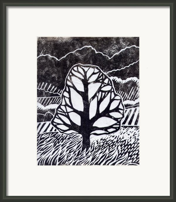 Ash Tree Framed Print By Becca Thorne