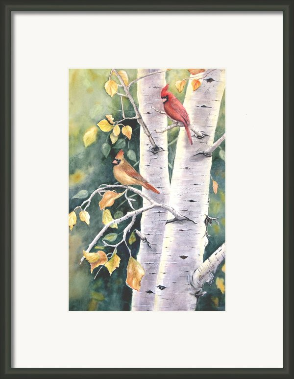 Aspen Light Framed Print By Patricia Pushaw